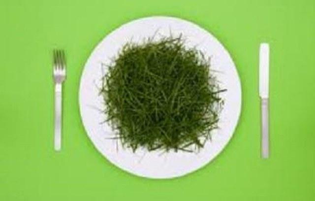 Vegan ? Wat eet je dan ?